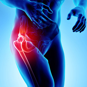 12 Common Hip Pain and Injuries in Athletes.