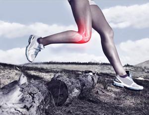 Imaging identifies cartilage regeneration in long-distance runners